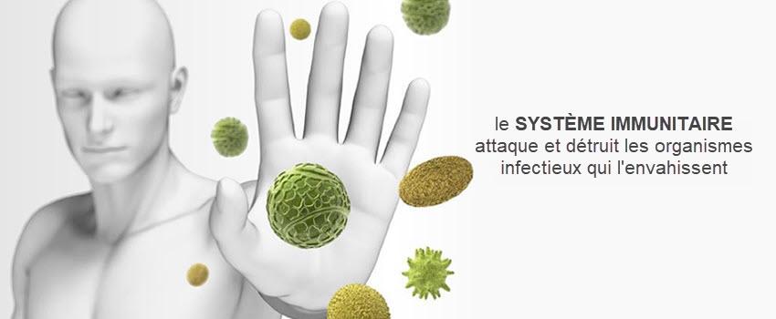 Systema Inmunologique